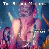 covers/759/secret_meeting_1437018.jpg