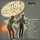covers/766/another_scorcher_12in_1458547.jpg
