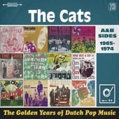 covers/767/golden_years_of_dutch_1461627.jpg