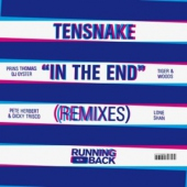 covers/770/in_the_end_remixes_1412876.jpg