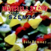 covers/771/invisible_story_szemz_974418.jpg