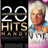 covers/773/20_unvergessene_hits_1471746.jpg