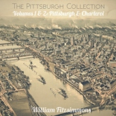 covers/773/pittsburgh_collection_12in_1470972.jpg
