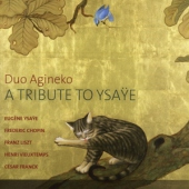 covers/777/a_tribute_to_ysaye_1470016.jpg