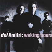 covers/782/waking_hours_del_a_40817.jpg