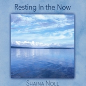 covers/790/resting_in_the_now_1478472.jpg