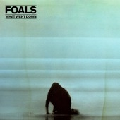 covers/800/what_went_down_foals_1375718.jpg