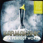 covers/807/in_a_perfect_world_karma_1518447.jpg