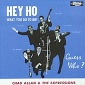 covers/816/hey_ho_what_you_do_to_me_783750.jpg