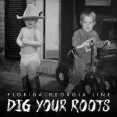 covers/819/dig_your_roots_1550438.jpg