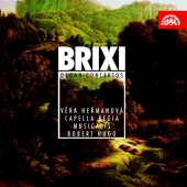 covers/876/brixi_koncerty_pro_varhany_a_orchest_herma_10365.jpg