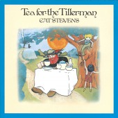 covers/891/tea_for_the_tillerman_steve_46556.jpg