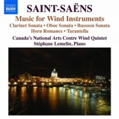 covers/892/music_for_wind_instrument_saint_846226.jpg