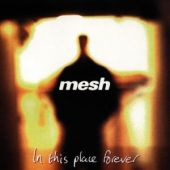 covers/96/in_this_place_forever_mesh.jpg